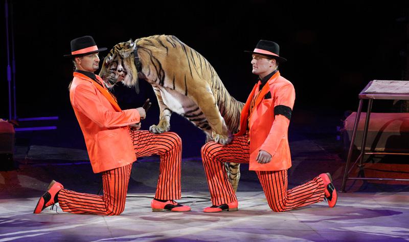 Цирковая постановка ЭМОЦИИ И...